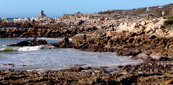 boardwalk to the Stony Point penguin colony at Bettys Bay