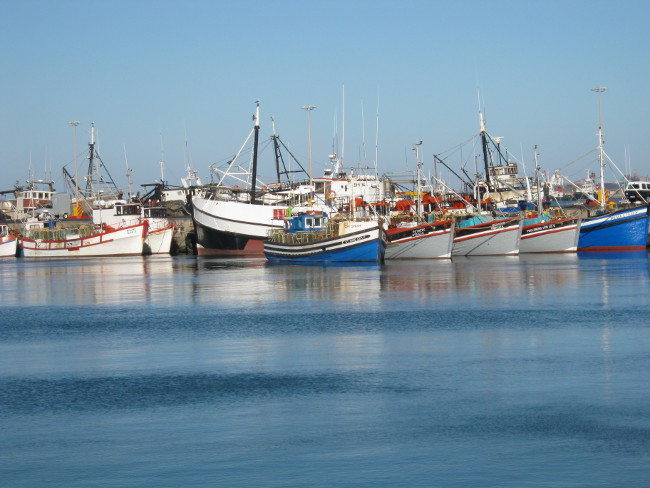 Saldanha Bay fishing boats