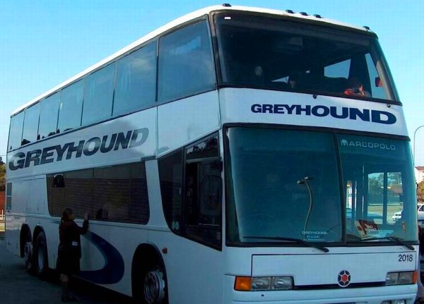 A Greyhound bus