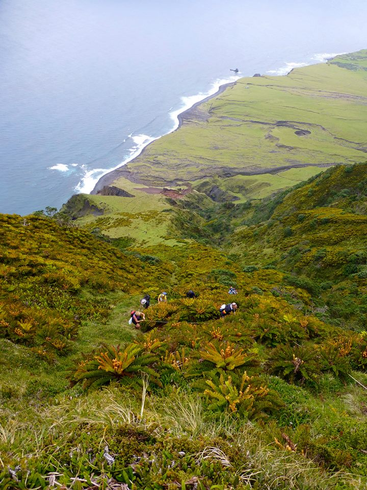 Climbing to the top of Tristan da Cunha Island