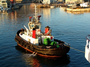 Palmiet tugboat tugging the Rhapsody into Cape Town